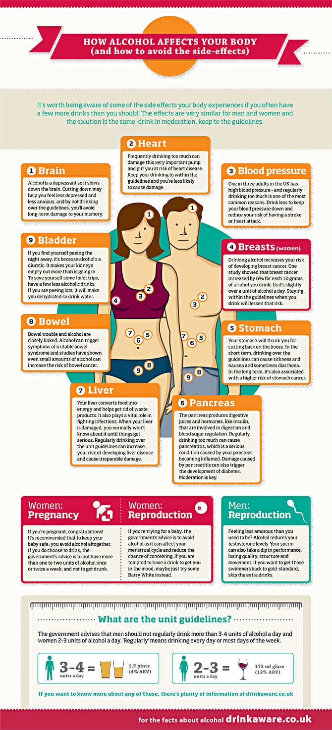 Alcohol and the body infographic