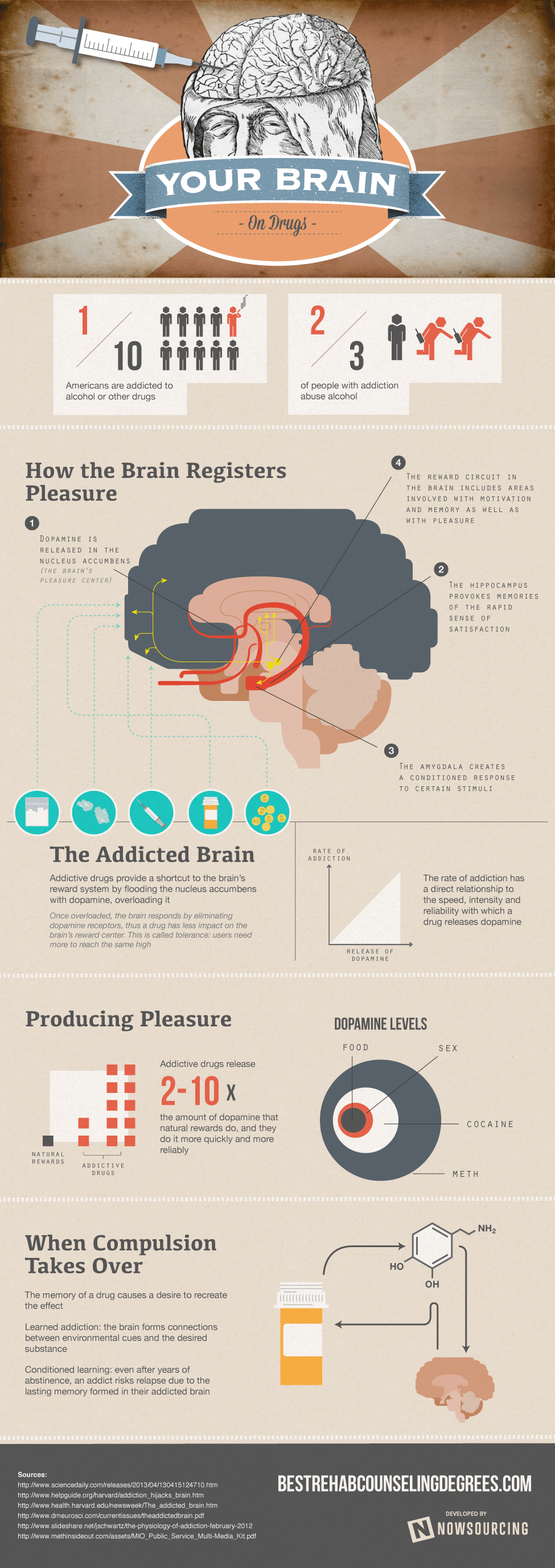 Your-Brain-On-Drugs-Infographic Narcotic Infographic Narcotic  Infographic Recovery Education